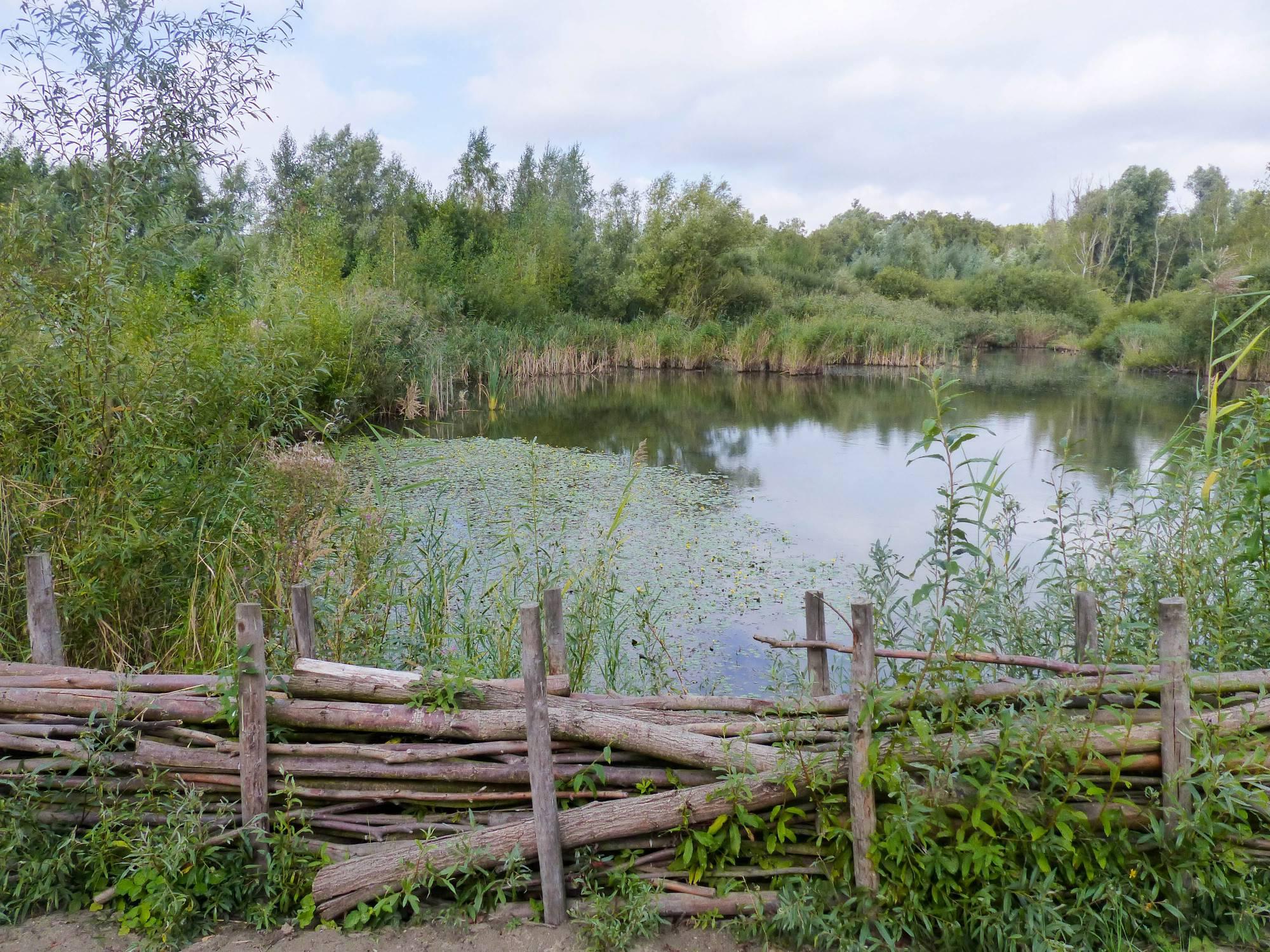 Natuurgebied Het Rot Antwerpen